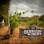 lower vineyard and sign