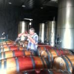 wine in barrels.JPG